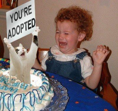 File:Adopted.jpg