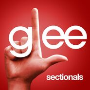 Glee ep - sectionals