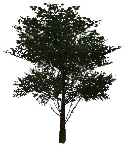 File:Wood (Military).png