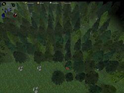Pine Woods Tileset