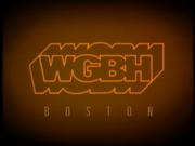 WGBH 1993
