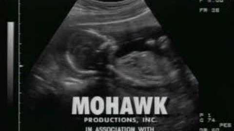 Mohawk Productions INC