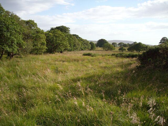 File:Grasslands2.jpg