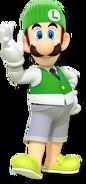 Casual Luigi