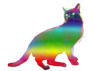 RainbowKittyPetShop