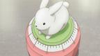 Rabbit timer