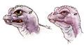 Concept Art - Godzilla vs. MechaGodzilla 2 - Baby Godzilla Head 4