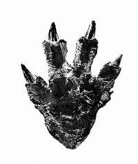 Godzilla 2016 Foot Design