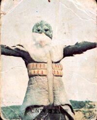 Greenman - Monsters - Kappalge
