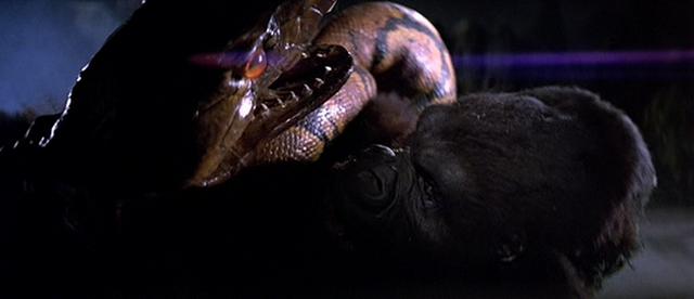 File:Kong vs. Giant Boa.png