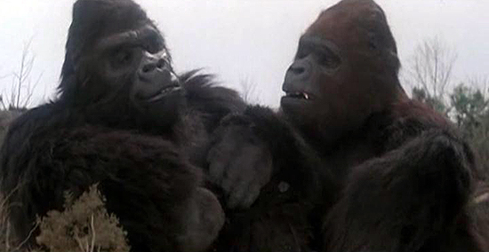 File:Kong and Lady Kong.jpg