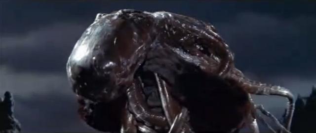 File:King Kong vs. Godzilla - 20 - Oodako Sucks.png