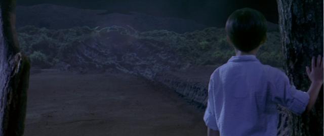 File:Godzilla vs. Megaguirus - The kid looks at the wormhole at night.png