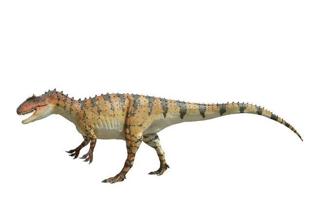 File:Allosaurus0002.jpg