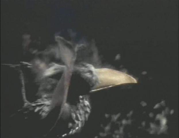 File:Obelisk Bird.png
