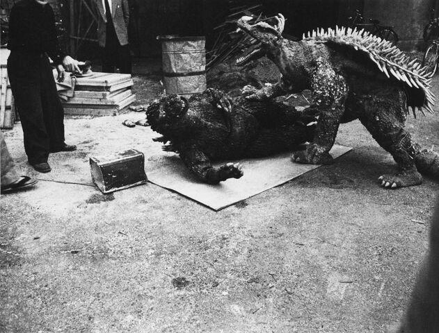 File:GRA - Godzilla is Down Before Anguirus.jpg