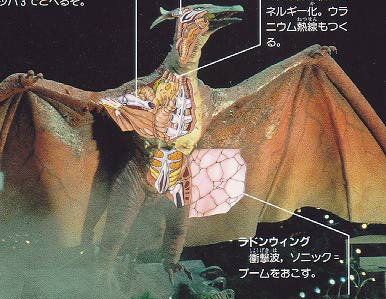 File:Fire rodan anatomyimage.jpeg