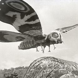 Godzilla.jp - 4 - ShodaiMosuImago Mothra 1964