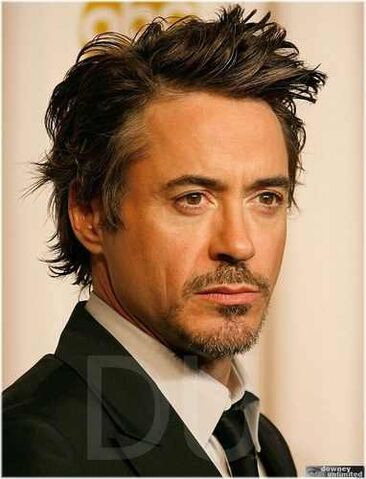 File:5038018-Downey, Jr.jpg