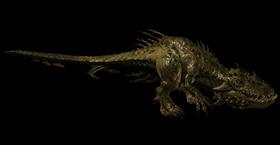 Raptor model