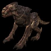 Demon Hog model