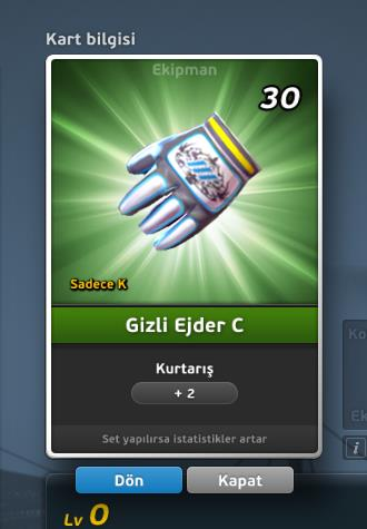 File:Gizli Ejder C GK Eldiven.jpg