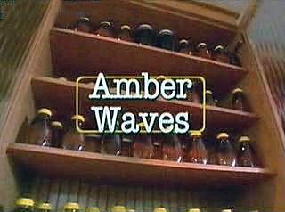 File:Amber Waves.jpg