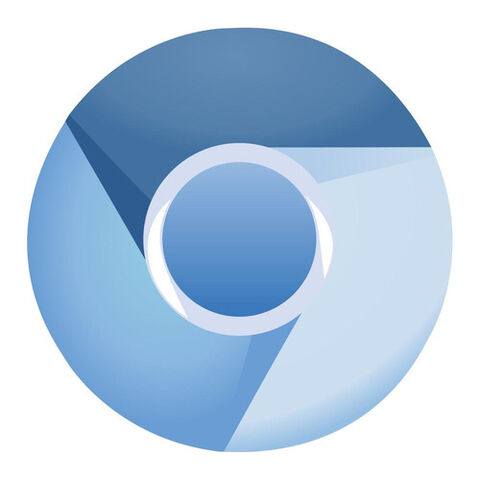 The Chromium icon, which Dartium also uses.