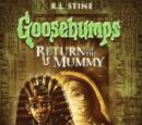 Return of the Mummy (DVD)