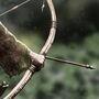 Arya's Bow