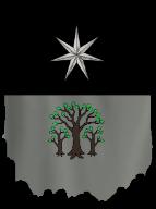 Gwendydd Snow Banner