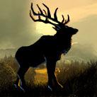 Massive Elk