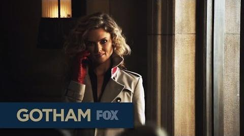 """GOTHAM Unexpected from """"Knock, Knock"""""""