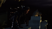 Selina Kyle prowling the rooftops of Gotham
