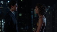 Bruce Wayne telling Selina Kyle how he feels about her
