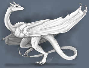Uploads 92e567da-6617-4347-a880-1f3f4c6fc54b-white wyvern by raptorbarry-d4fifmk
