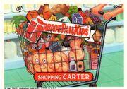 Shopping Carter