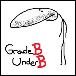 File:GradeBUnderB.png