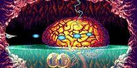 Eleos Brain