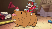 S1e11 Mabel riding hamster