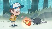 S1e2 possum stealing lantern.png