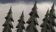 S1e1 trees