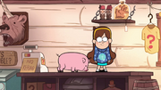 S1e18 Mabel and Waddles side step on the counter