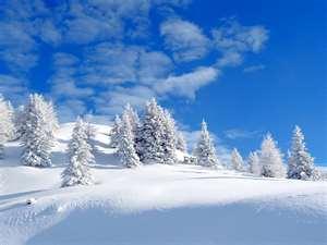 File:Snow.jpeg