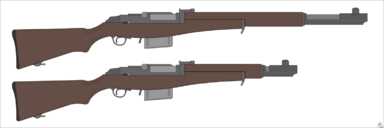 Felreden Ceremonial Rifle