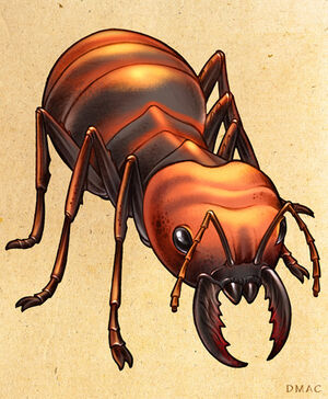 Giant ant by d mac