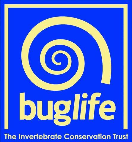 File:Buglife logo.jpg