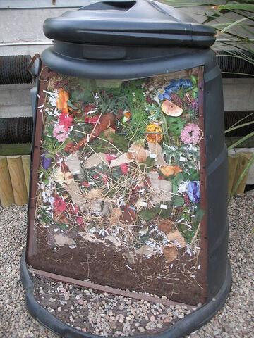 File:450px-Compost bin cutaway by Bruce McAdam.jpg