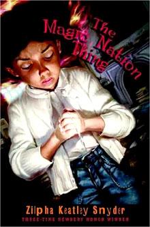 Book tmnt 2005
