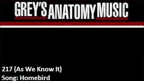 """Homebird"" - Foy Vance"